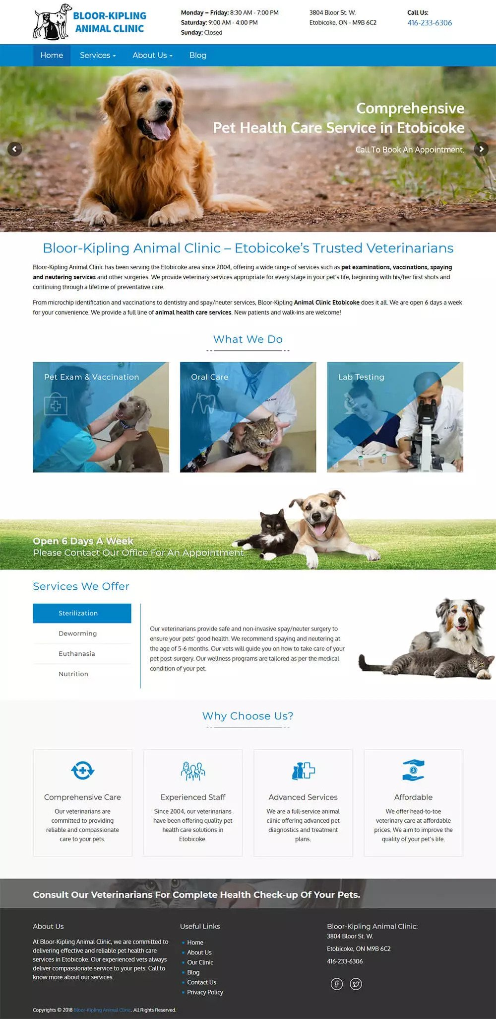 Website Design Toronto